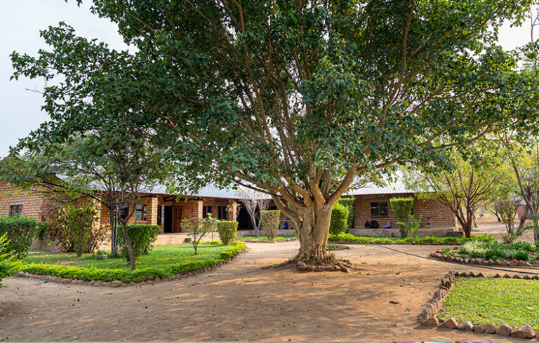 acacia_facilities03